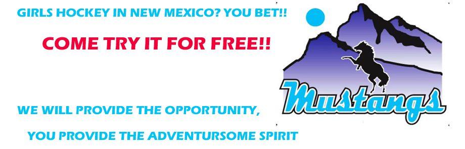 Mustangs Girl's Hockey – Try Hockey for Free